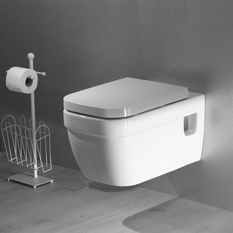 wall mounted toilet example